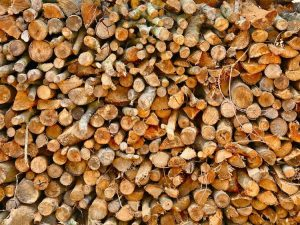 oak wood for smoking meat